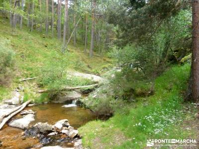 Cerro Perdiguera-Sierra Morcuera-Canencia; viaje organizado a madrid excursiones por madrid y alrede